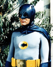 This is an image of 282070 Adam West Photograph & Poster