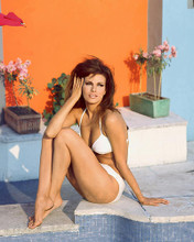 This is an image of 234408 Raquel Welch Photograph & Poster