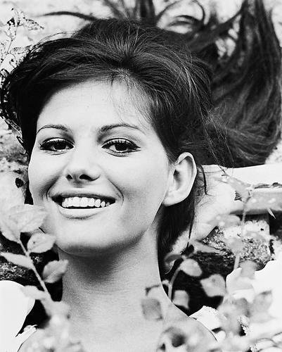 This is an image of 170353 Claudia Cardinale Photograph & Poster