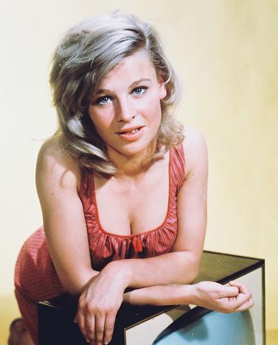 This is an image of 215433 Julie Christie Photograph & Poster