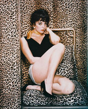 This is an image of 215556 Joan Collins Photograph & Poster