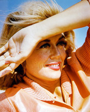 This is an image of 246113 Dorothy Malone Photograph & Poster