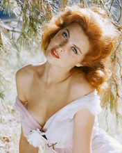 This is an image of 246503 Tina Louise Photograph & Poster