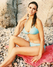 This is an image of 220801 Raquel Welch Photograph & Poster