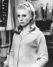 This is an image of 169433 Catherine Deneuve Photograph & Poster