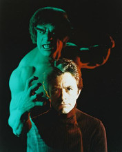 This is an image of 211371 The Incredible Hulk Photograph & Poster