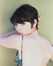 This is an image of 221756 Susan Saint-James Photograph & Poster