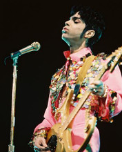 This is an image of 222803 Prince Photograph & Poster