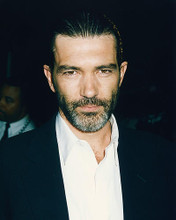This is an image of 249015 Antonio Banderas Photograph & Poster