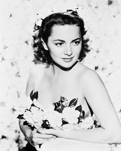 This is an image of 167967 Olivia De Havilland Photograph & Poster