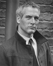 This is an image of 172015 Paul Newman Photograph & Poster