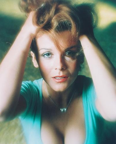ANN MARGRET POSTER 24 X 36 Inches Looks beautiful