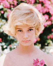 This is an image of 234660 Yvette Mimieux Photograph & Poster