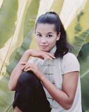 This is an image of 235615 France Nuyen Photograph & Poster
