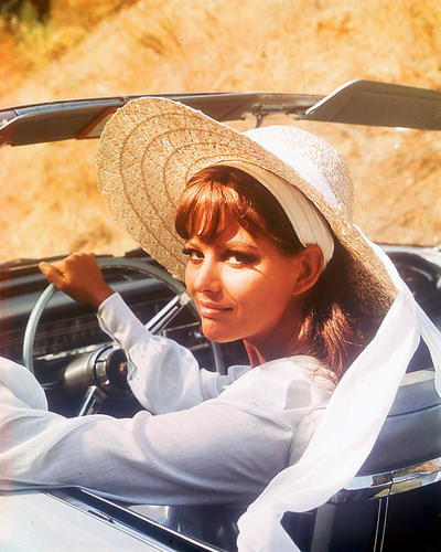 This is an image of 252308 Claudia Cardinale Photograph & Poster