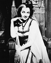 This is an image of 168870 The Munsters Photograph & Poster