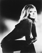 This is an image of 169238 Kim Novak Photograph & Poster