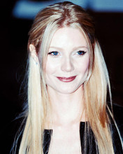 This is an image of 236422 Gwyneth Paltrow Photograph & Poster
