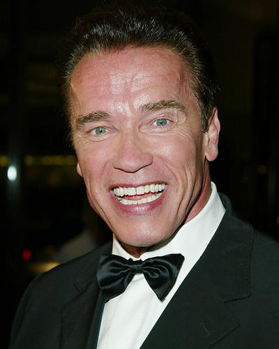 This is an image of 254659 Arnold Schwarzenegger Photograph & Poster
