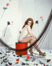 This is an image of 254895 Ann-Margret Photograph & Poster