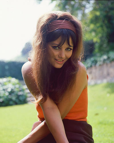 This is an image of 255218 Claudia Cardinale Photograph & Poster