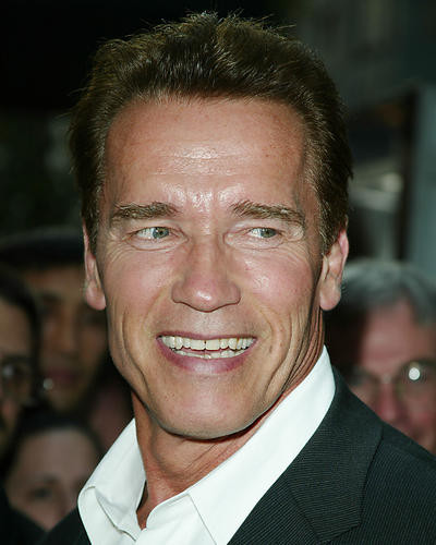 This is an image of 256054 Arnold Schwarzenegger Photograph & Poster