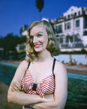 This is an image of 256479 Veronica Lake Photograph & Poster