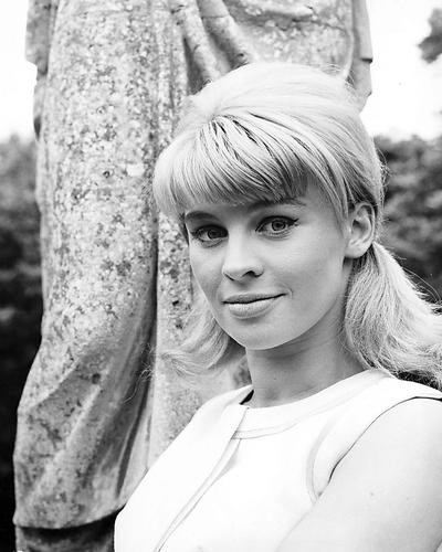This is an image of 173109 Julie Christie Photograph & Poster