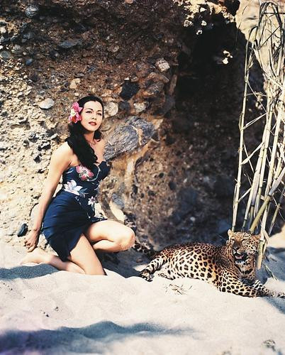 This is an image of 244939 Maria Montez Photograph & Poster