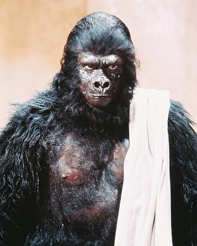 This is an image of 245655 Planet of the Apes Photograph & Poster