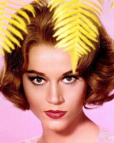 Photograph & Poster Of Jane Fonda 256699