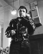 This is an image of 258417 Robert Blake Photograph & Poster