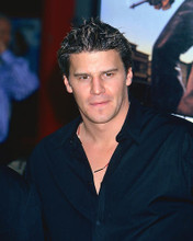 This is an image of 258420 David Boreanaz Photograph & Poster