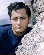 This is an image of 258484 John Derek Photograph & Poster