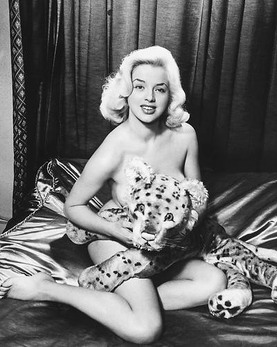 This is an image of 173995 Diana Dors Photograph & Poster