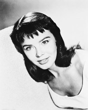 This is an image of 170824 Janet Munro Photograph & Poster