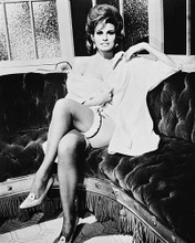 This is an image of 171107 Raquel Welch Photograph & Poster
