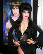 This is an image of 257850 Elvira Photograph & Poster
