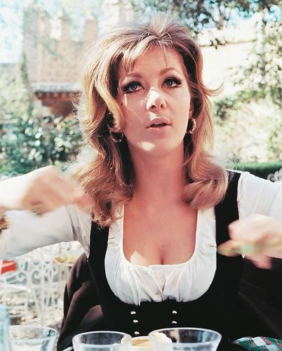 This is an image of 252536 Ingrid Pitt Photograph & Poster