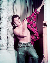 This is an image of 261152 Tony Curtis Photograph & Poster