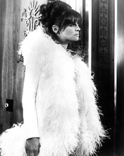 This is an image of 174784 Julie Christie Photograph & Poster