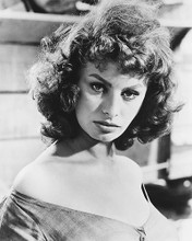 This is an image of 174887 Sophia Loren Photograph & Poster