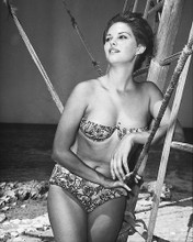 This is an image of 174996 Claudia Cardinale Photograph & Poster