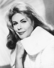 This is an image of 175130 Elizabeth Montgomery Photograph & Poster