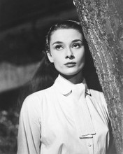 This is an image of 175418 Audrey Hepburn Photograph & Poster