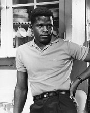This is an image of 175545 Sidney Poitier Photograph & Poster