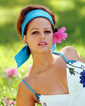 This is an image of 259881 Claudia Cardinale Photograph & Poster