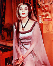 This is an image of 264632 The Munsters Photograph & Poster
