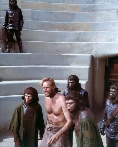 This is an image of 269823 Planet of the Apes Photograph & Poster