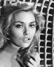 This is an image of 186564 Alexandra Bastedo Photograph & Poster